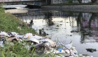 Falta de saneamento básico causa mais de 273 mil internações em 2019